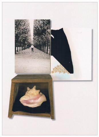 Foglie morte nella Cour du Palais Royal Paris, fotografia, pigmento, pastello, pizzo su cartone, Hammer su alluminio, legno, conchiglia, velluto, cm 73x83x38