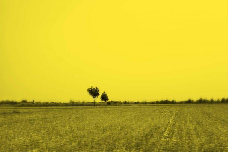 Davide coltro, Landscape